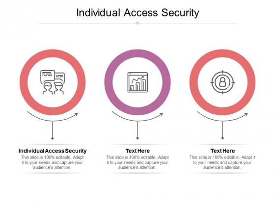 Individual Access Security Ppt PowerPoint Presentation Design Ideas Cpb