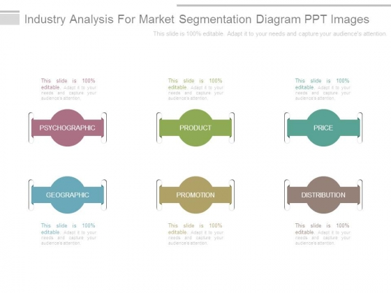 Industry Analysis For Market Segmentation Diagram Ppt Images