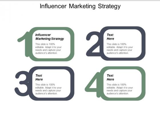 Influencer Marketing Strategy Ppt PowerPoint Presentation Gallery Skills Cpb