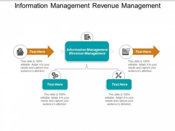 Information Management Revenue Management Ppt PowerPoint Presentation Pictures Objects Cpb