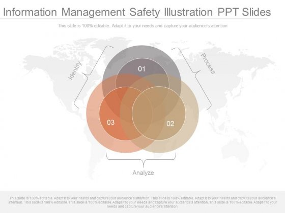 Information Management Safety Illustration Ppt Slides