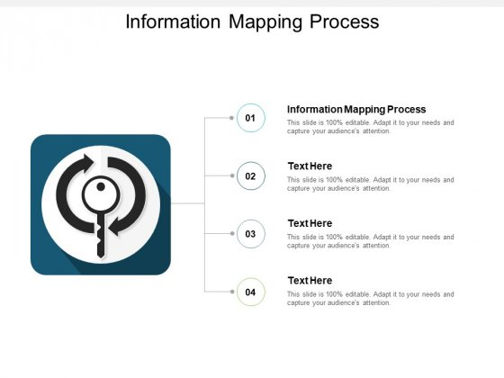 Information Mapping Process Ppt PowerPoint Presentation Summary Microsoft Cpb