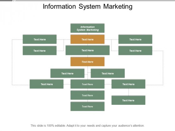 Information System Marketing Ppt PowerPoint Presentation Styles Display Cpb