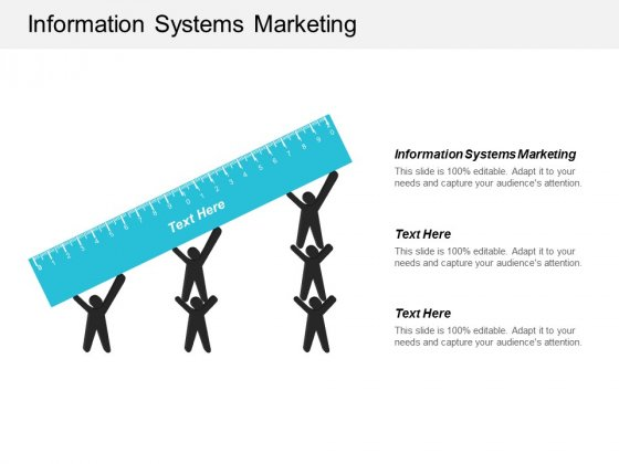 Information Systems Marketing Ppt Powerpoint Presentation Styles Design Templates Cpb