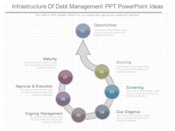 Infrastructure Of Debt Management Ppt Powerpoint Ideas