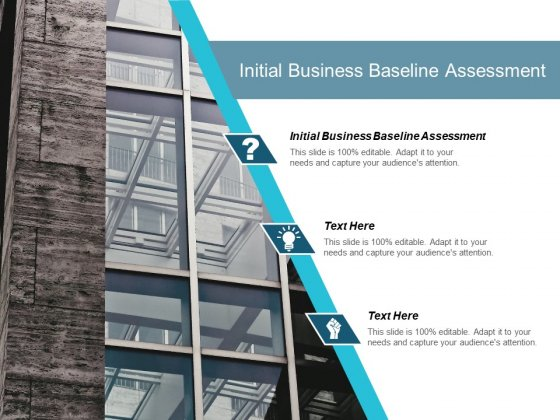 Initial Business Baseline Assessment Ppt PowerPoint Presentation Pictures Portrait Cpb