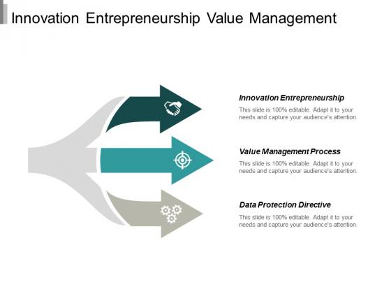 Innovation Entrepreneurship Value Management Process Data Protection Directive Ppt PowerPoint Presentation Professional Layout