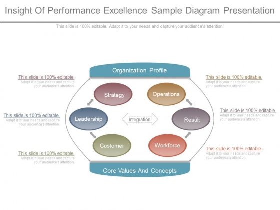 Insight Of Performance Excellence Sample Diagram Presentation