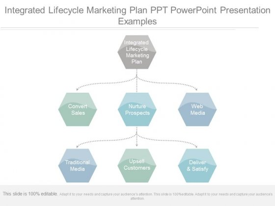 integrated lifecycle marketing plan ppt powerpoint presentation