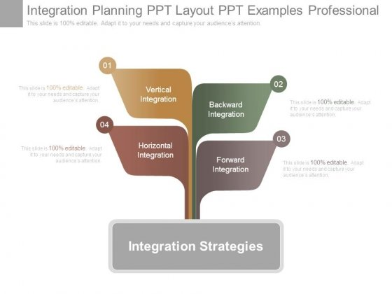 Integration Planning Ppt Layout Ppt Examples Professional