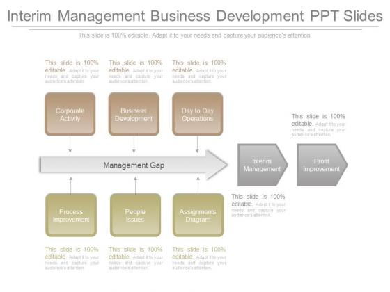 Interim Management Business Development Ppt Slides