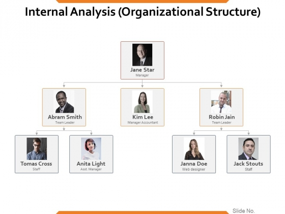 Internal Analysis Organizational Structure Ppt PowerPoint Presentation Infographic Template Clipart