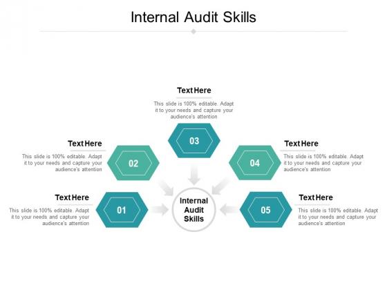 Internal Audit Skills Ppt PowerPoint Presentation File Deck Cpb