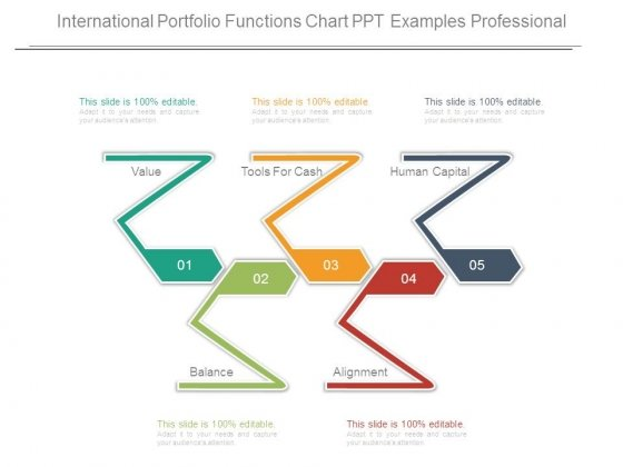 International Portfolio Functions Chart Ppt Examples Professional