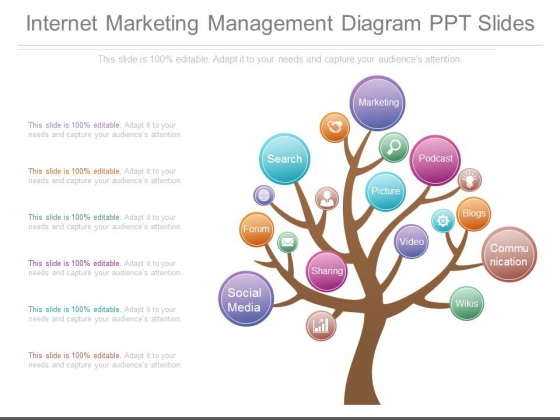 Internet Marketing Management Diagram Ppt Slides