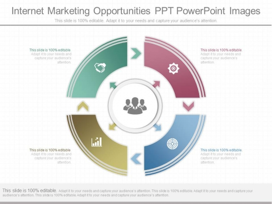 Internet Marketing Opportunities Ppt Powerpoint Images