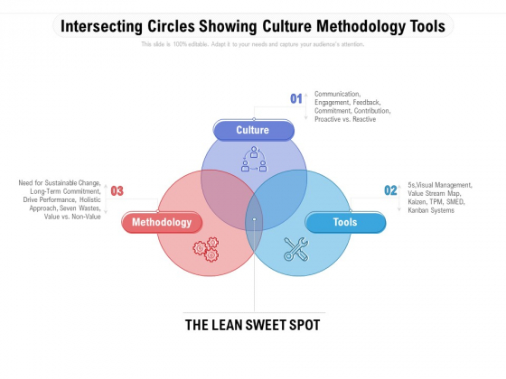 Intersecting Circles Showing Culture Methodology Tools Ppt PowerPoint Presentation Professional Graphic Images PDF