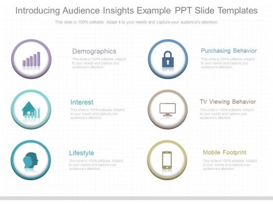 Introducing Audience Insights Example Ppt Slide Templates