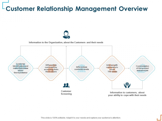 Introducing CRM Framework Within Organization Customer Relationship Management Overview Mockup PDF