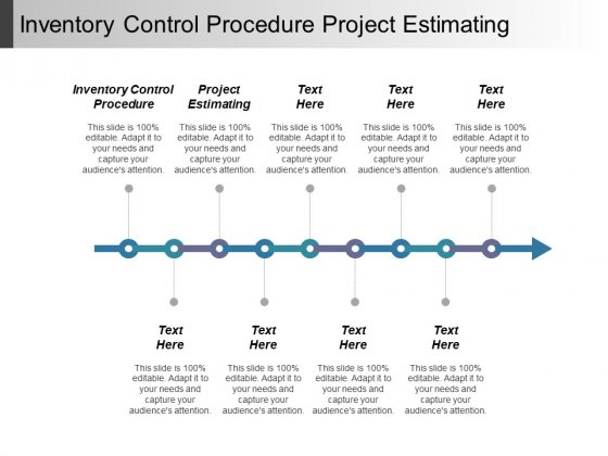 Inventory Control Procedure Project Estimating Ppt PowerPoint Presentation Infographics Picture