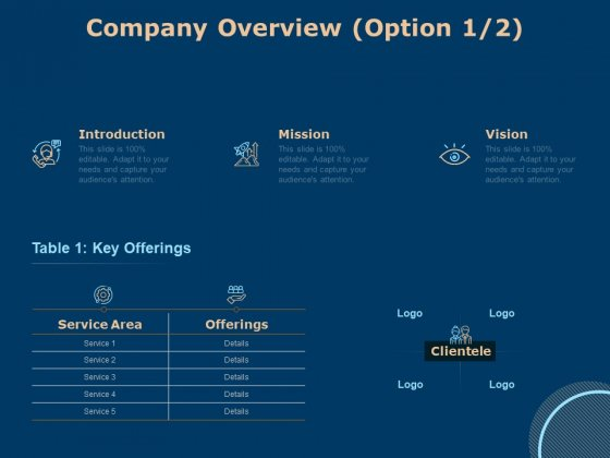 Investing In Start Ups Company Overview Option Ppt Summary Display PDF