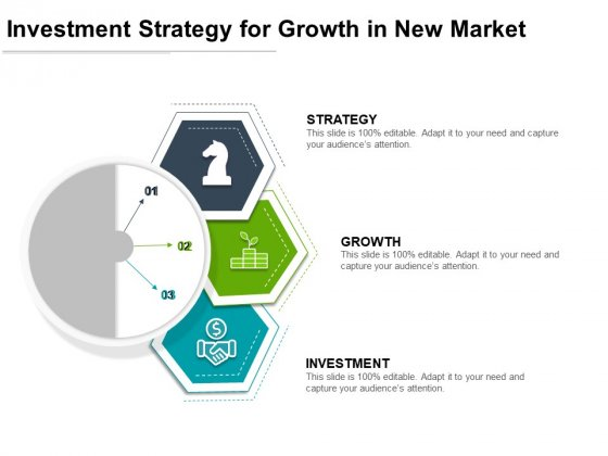 Investment Strategy For Growth In New Market Ppt PowerPoint Presentation Icon Slides PDF