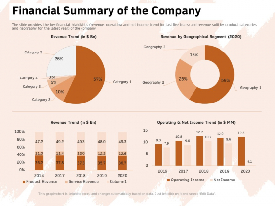 Investor Deck For Capital Generation From Substitute Funding Options Financial Summary Of The Company Mockup PDF