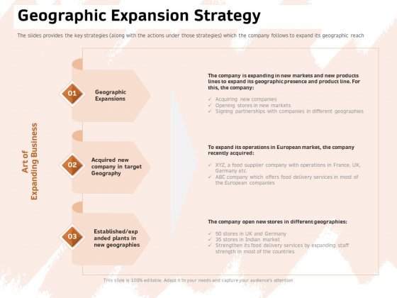 Investor Deck For Capital Generation From Substitute Funding Options Geographic Expansion Strategy Demonstration PDF