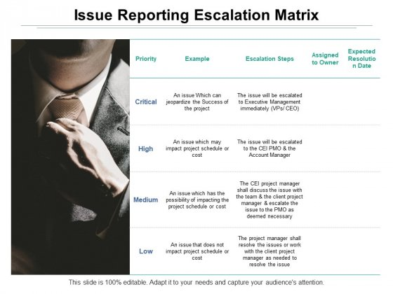 Issue Reporting Escalation Matrix Ppt PowerPoint Presentation Model Introduction