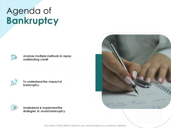 Issues Which Leads To Insolvency Agenda Of Bankruptcy Ppt Slides Deck PDF