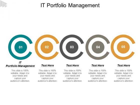 It Portfolio Management Ppt PowerPoint Presentation Pictures Infographic Template Cpb