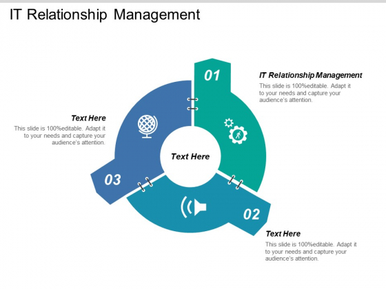 It Relationship Management Ppt PowerPoint Presentation File Demonstration Cpb