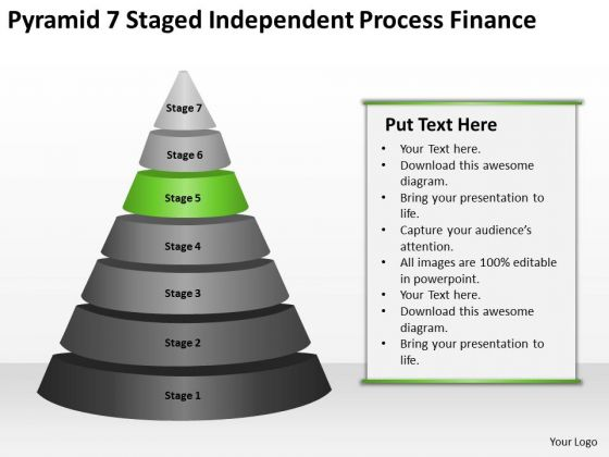 independent process finance ppt 5 executive summary example business