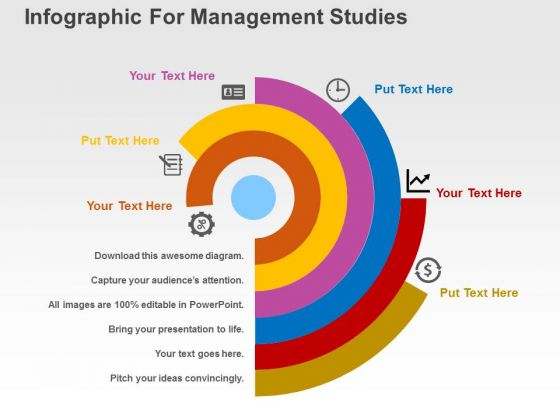 Infographic For Management Studies PowerPoint Templates