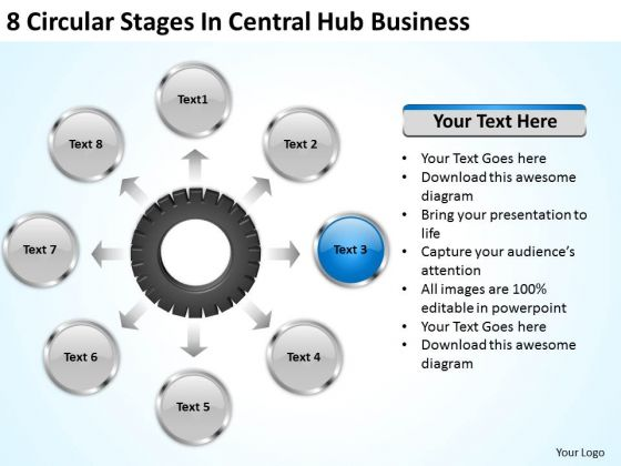 It Business Strategy 8 Circular Stages Central Hub Plan And