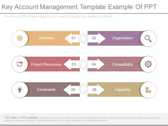 Key Account Management Template Example Of Ppt - PowerPoint Templates