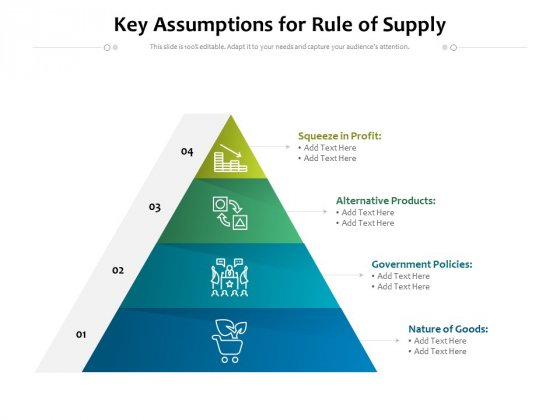 Key Assumptions For Rule Of Supply Ppt PowerPoint Presentation File Visuals PDF