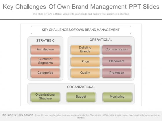 Key Challenges Of Own Brand Management Ppt Slides