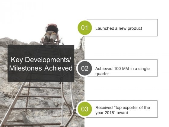 Key Developments Milestones Achieved Ppt PowerPoint Presentation Influencers