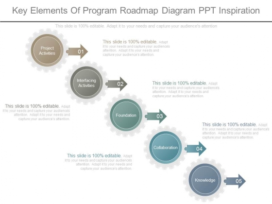 Key Elements Of Program Roadmap Diagram Ppt Inspiration