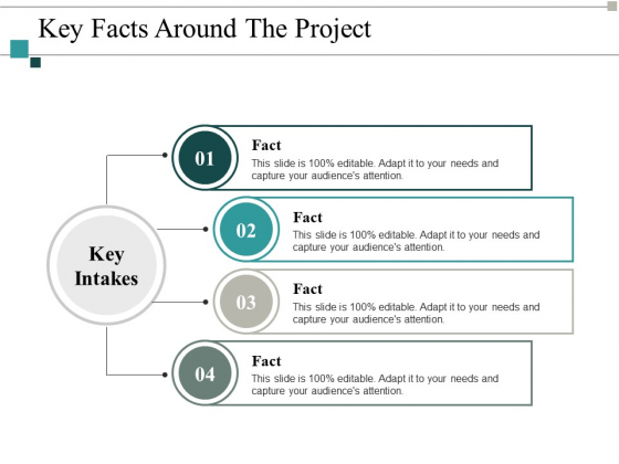 Key Facts Around The Project Ppt PowerPoint Presentation Summary Design Inspiration