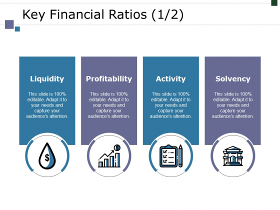 Key Financial Ratios Template 2 Ppt PowerPoint Presentation Ideas Mockup