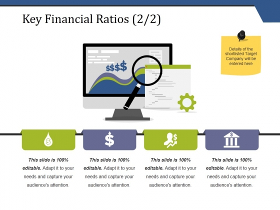 Key Financial Ratios Template 2 Ppt PowerPoint Presentation Pictures Styles