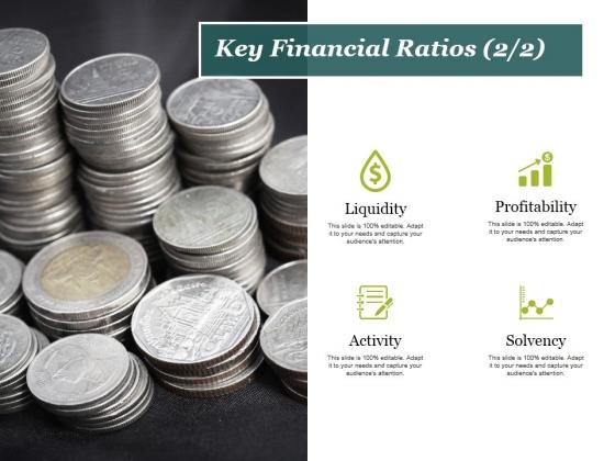Key Financial Ratios Template 2 Ppt PowerPoint Presentation Slides Ideas
