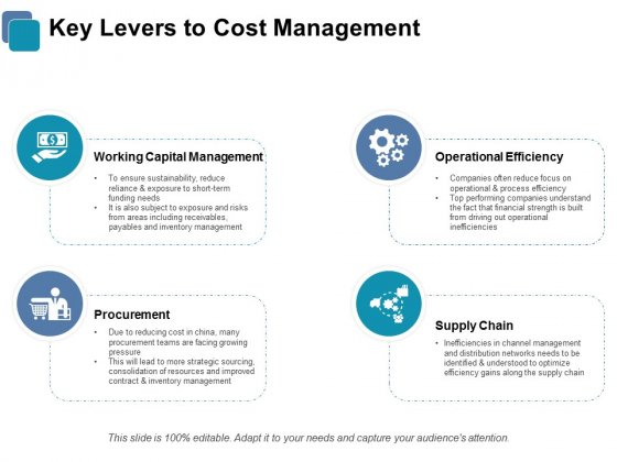 Key Levers To Cost Management Ppt PowerPoint Presentation Picture