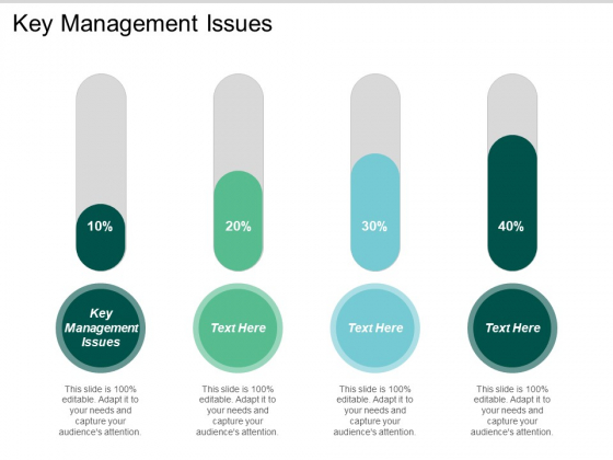 Key Management Issues Ppt PowerPoint Presentation Ideas Graphics Cpb