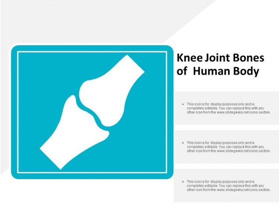 Knee Joint Bones Of Human Body Ppt Powerpoint Presentation Slides Master Slide