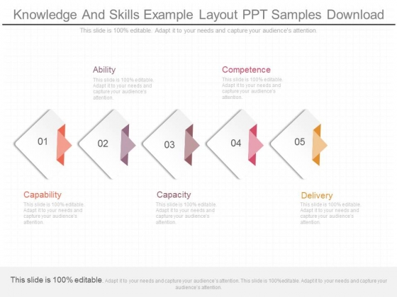 Knowledge And Skills Example Layout Ppt Samples Download