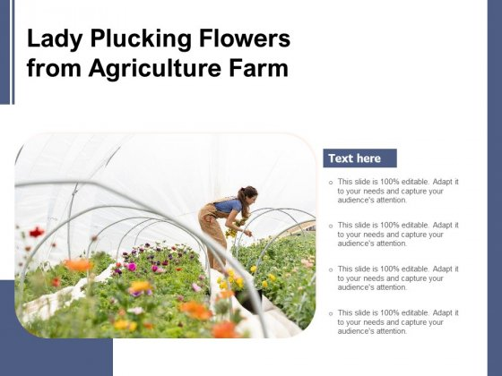 Lady Plucking Flowers From Agriculture Farm Ppt PowerPoint Presentation Diagram Graph Charts PDF