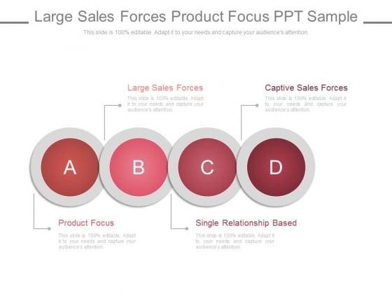 Large Sales Forces Product Focus Ppt Slides